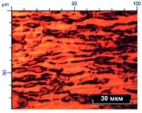 Деформационное поведение перспективных магниевых сплавов c LPSO структурой: экспериментальное исследование in-situ и моделирование