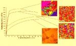 Создание научно-технологических основ производства биорезорбируемых магниевых сплавов c улучшенным комплексом свойств для медицинских имплантатов