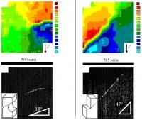 Пространственно-временные закономерности локализованной пластической деформации объемных металлических стекол