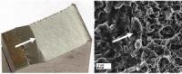 Разработка концептуальных основ перехода к использованию новых ультрамелкозернистых металлических материалов повышенной конструктивной прочности